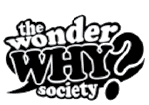 wonder-why-society